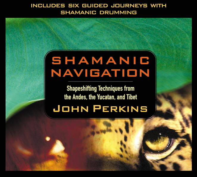 AW00542D-Shamanic-Navigation-published-cover.jpg