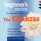 AW00552D The Beginner's Guide to the Chakras