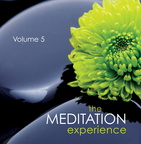 AW01330D The Meditation Experience Volume 5