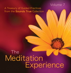 SW02025D The Meditation Experience Volume 7
