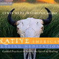 AW02016D Native American Healing Meditations