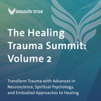 DD05879W The Healing Trauma Summit Volume 2