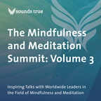 DD05819W The Mindfulness and Meditation Summit Volume 3