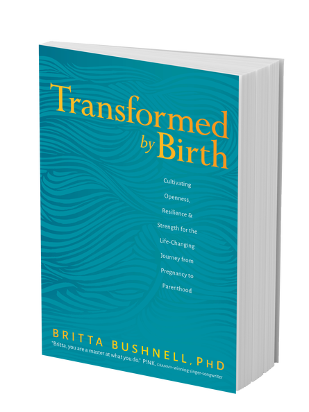 BK05866-Transformed-by-Birth-3D-cover.png